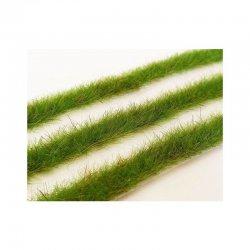 Long grass strips - Spring