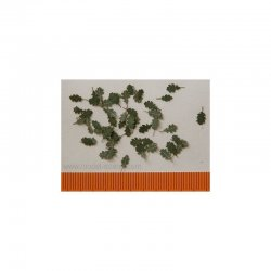Oak - green 1:35