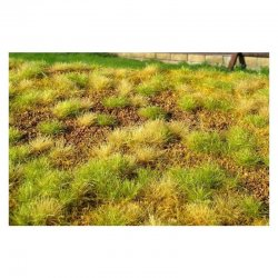 Steppe unwatered (late summer)