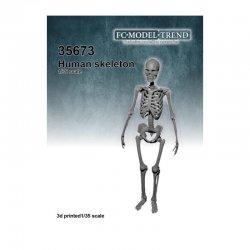 Human skeleton , 1/35 scale
