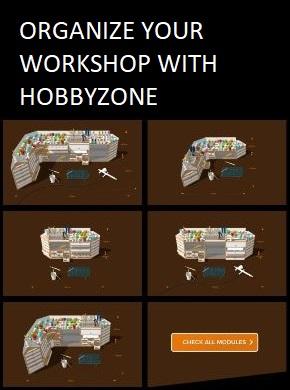 Hobbyzone workshop organiser